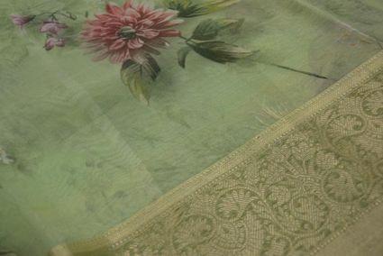 Organza Shadow Green Silk Sarees With Zari Border